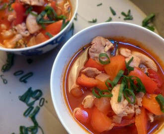 Chinese Sweet and Sour Chicken Soup
