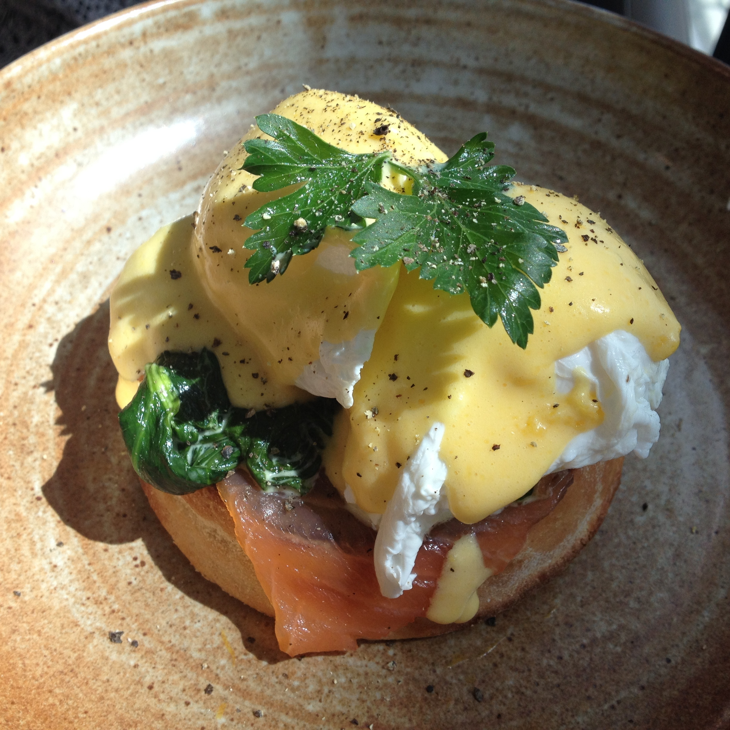 BRUNCH AT DARWIN, SKYGARDEN, LONDON