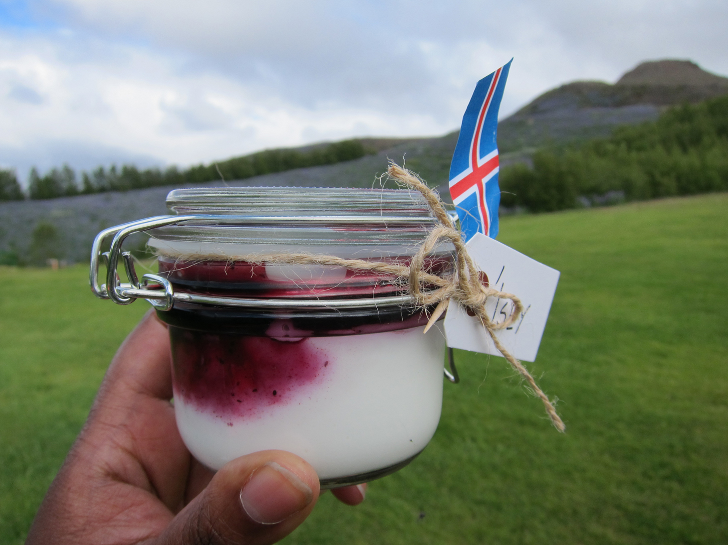 Food I Fancy in…Iceland with Ísey Skyr