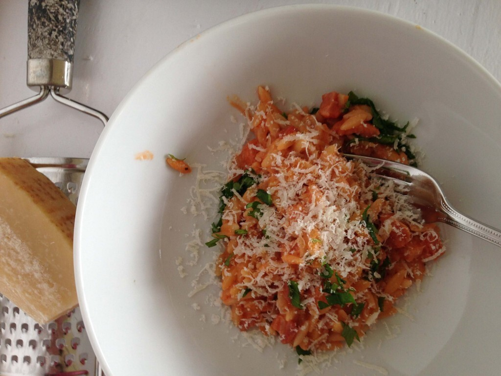 Orzo with Bacon, Tomato and Cream Sauce