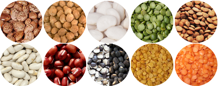 Pulses – the best kept protein secret