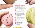 Macaron Mania: The Recipes of the World's Top Pastry Chefs