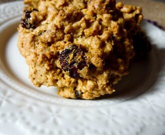 Cranberry Spiced Oat Cookies {GF} {dairy-free}