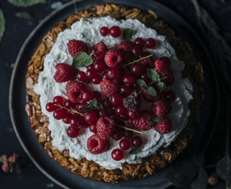 glutenfree bee sting cake with coconut sugar and raspberry cream