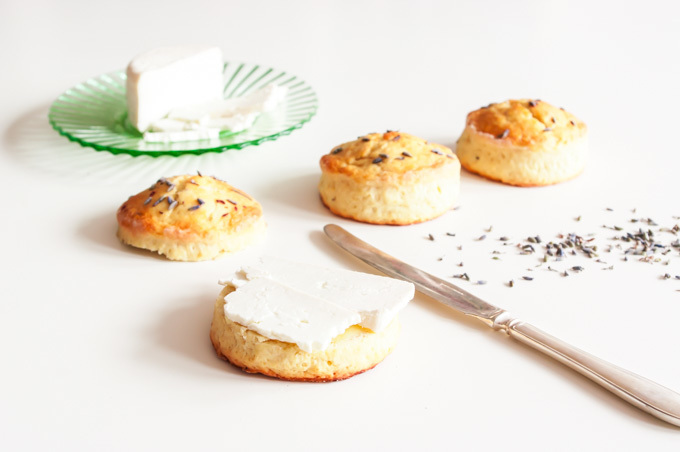 Lavender Scones with Yorkshire Cheese