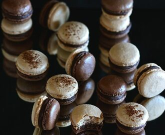 Duo de macarons de chocolate