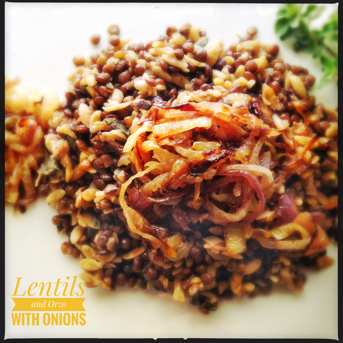 Lentils and Orzo Pasta with Caramelised Onions