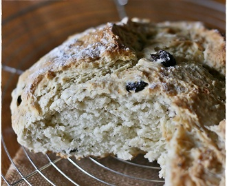 Damper with olives and oregano – Pane veloce australiano con olive e origano