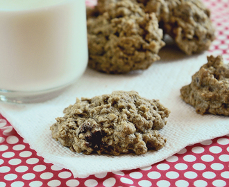 61. GLUTEN FREE OATMEAL CHOCOLATE CHIP COOKIES and IRENE