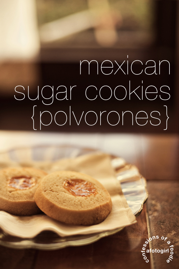 "a breath: grief throws sucker punches & a bite: ""how to"" on Mexican Sugar Cookies with Tio {recipe}"