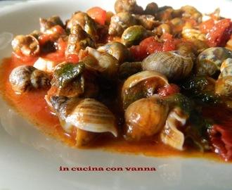 Ricette di come cucinare le lumache di mare mytaste for Cucinare le lumache