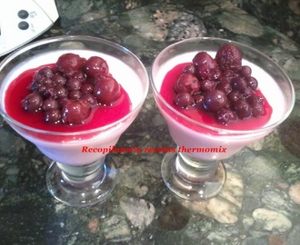 Recetas de zumo frutas thermomix mytaste - Macedonia de frutas thermomix ...