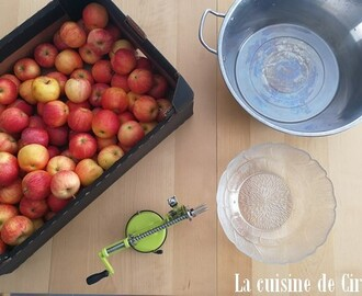recettes de compote de pomme en cocotte minute mytaste. Black Bedroom Furniture Sets. Home Design Ideas