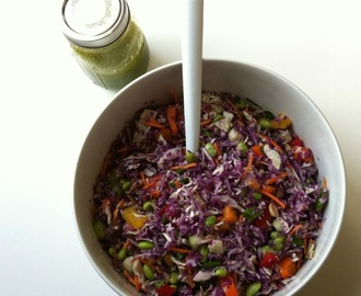 Rainbow Thai Coleslaw with Sweet Cilantro-Lime Dressing {Mariano's Grocery Store Chicago}