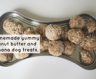 Homemade peanut butter and banana dog treats….
