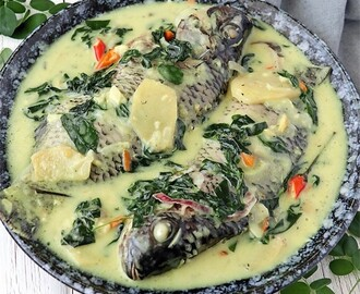 Ginataang Tilapia (Tilipia in Spicy Coconut Milk)