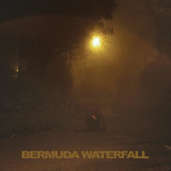 Savage Sean Nicholas;Bermuda Waterfall