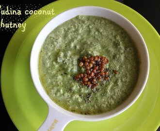 Pudina coconut chutney or mint chutney recipe – How to make pudina coconut chutney recipe – chutney recipes