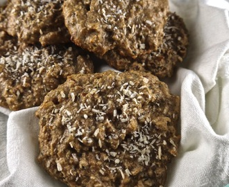 Sugar-Free Paleo Breakfast Cookies