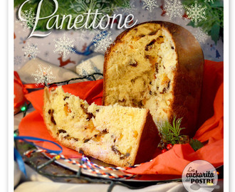 NAVIDAD 2015 (II): PANETTONE CON CHOCOLATE, PASAS Y NARANJA / CHRISTMAS 2015 (II): PANETTONE WITH CHOCOLATE, RAISIN AND ORANGE