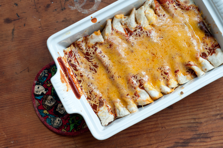 Easy Duck Enchiladas