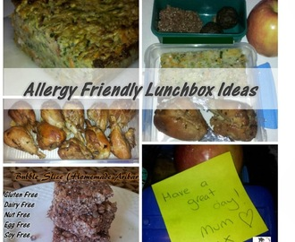 Allergy Friendly Lunch Box Ideas