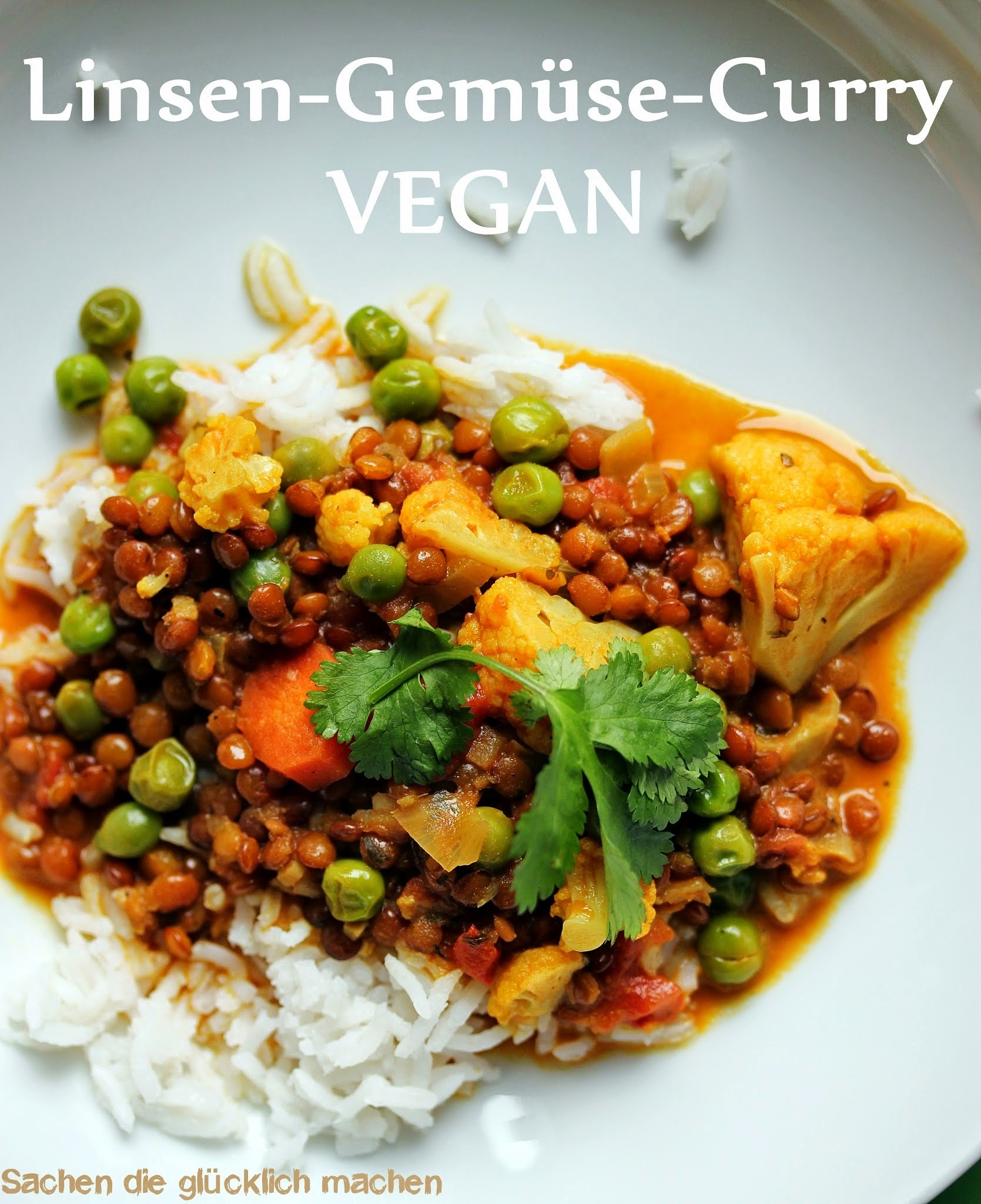 Linsen Gemüse Curry VEGAN