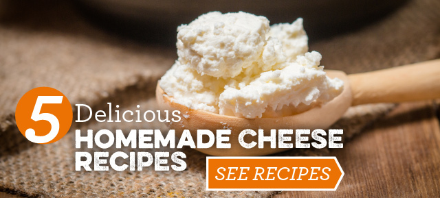 Making Homemade Cheese is Easy With These 5 Recipes!