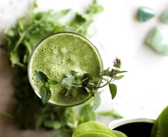 SUMMER DRINKS - GRÜNER BIRNEN CHLORELLA SMOOTHIE