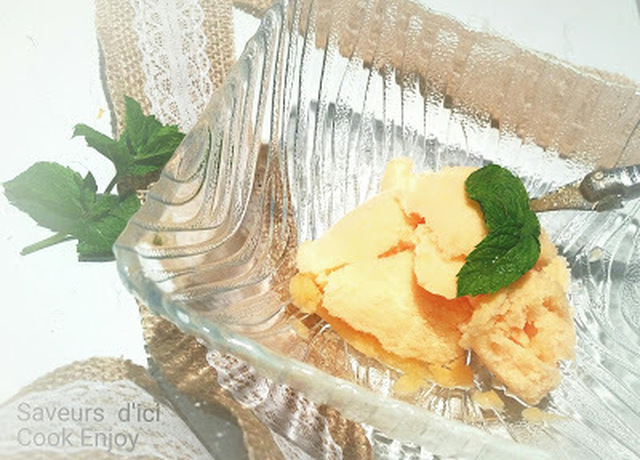 THERMOMIX : Sorbet Melon - Menthe