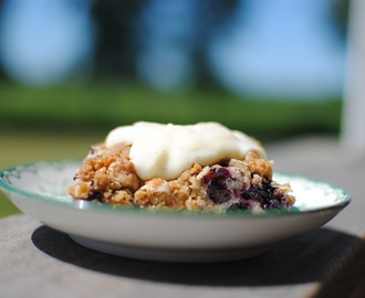 blueberry crumble cakes