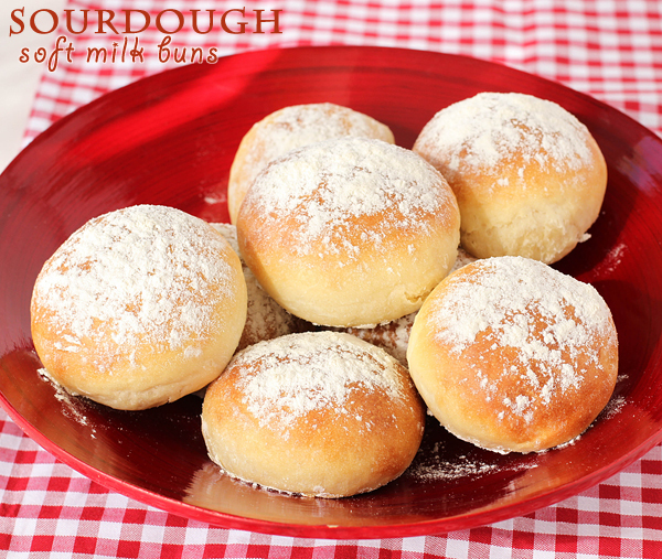 Sourdough adventures – soft milk sandwich buns