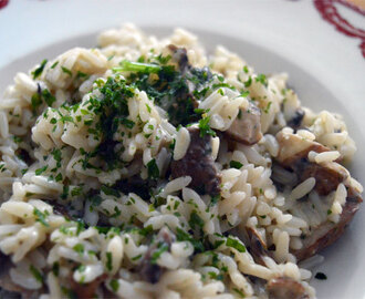 Reis mit braunen Champignons / Rice with brown mushrooms