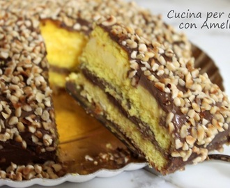 Torta alle due creme, ricette