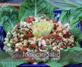 Mexican Vegetable Salad {paleo, dairy & gluten free}