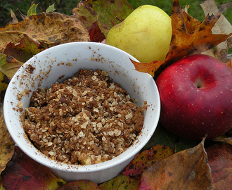 Single Serve Oatmeal Packet Apple Crisp