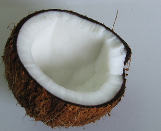 Make Your Own Coconut Milk