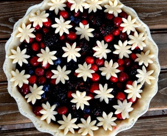 All berry, cranberry pie (Pita sa brusnicama i sumskim vocem)