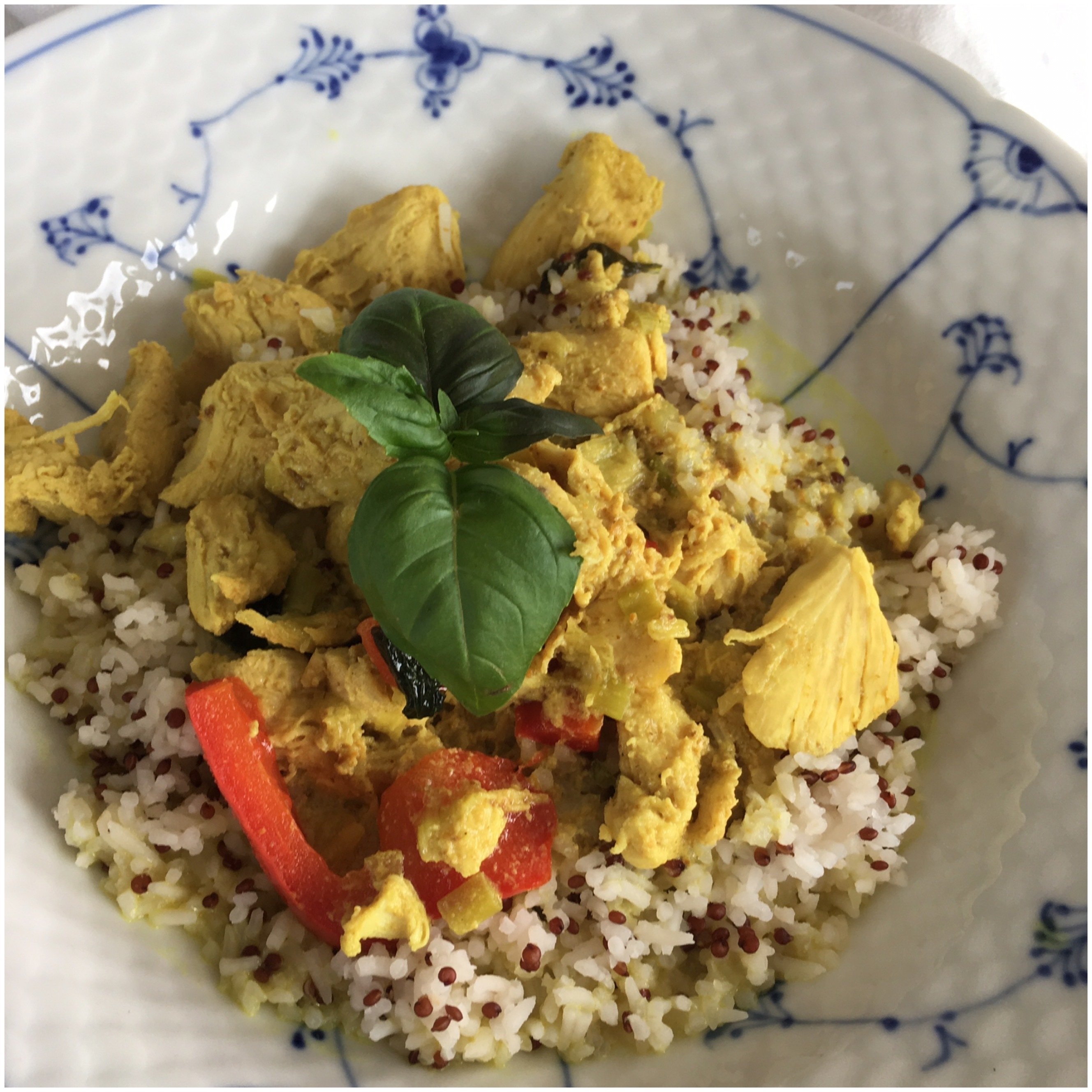 Thai curry gryde