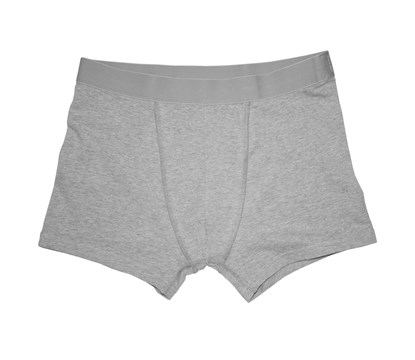 Bread & Boxers Boxer Brief Grey Mélange