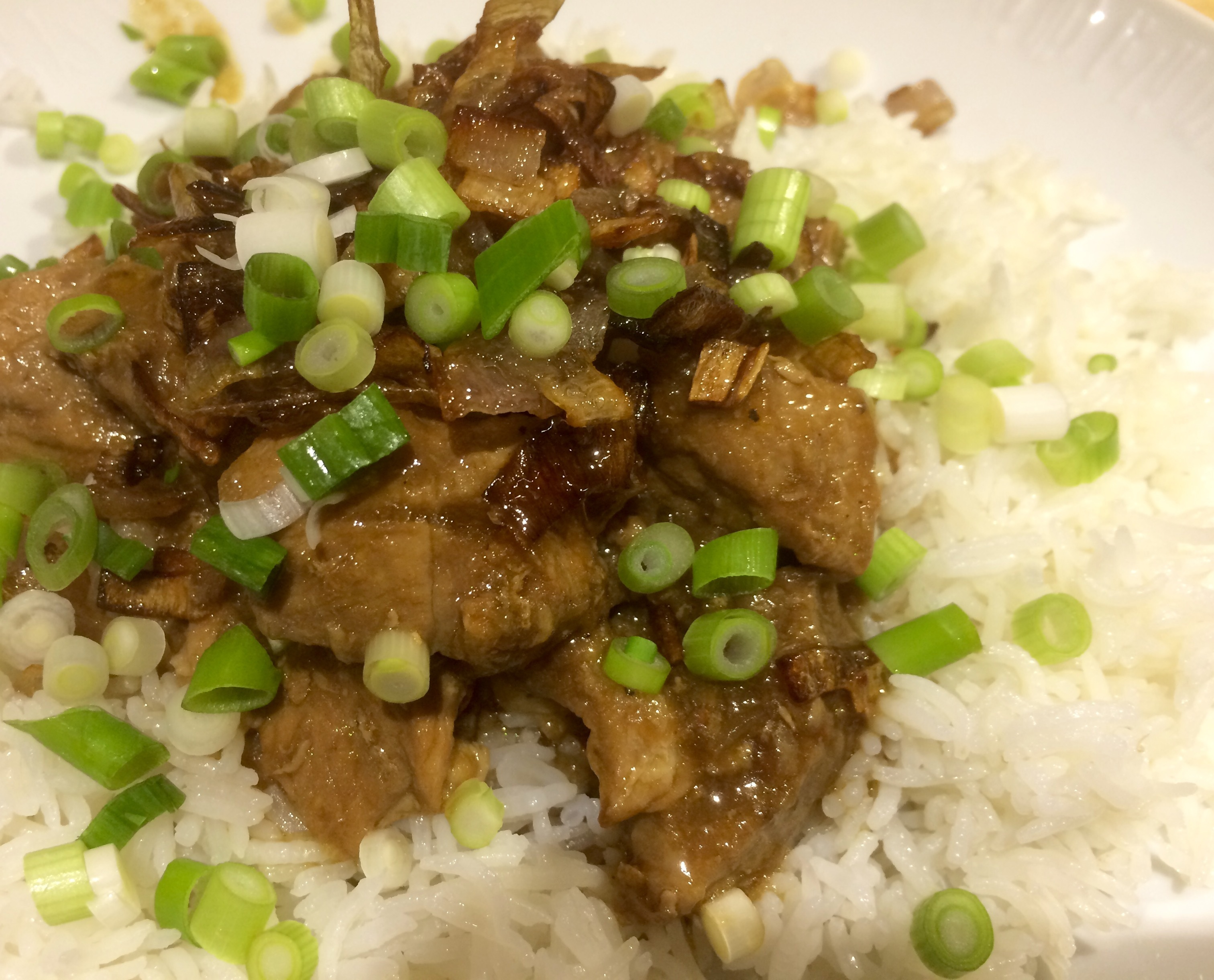 Aromatic pork with ginger and soy
