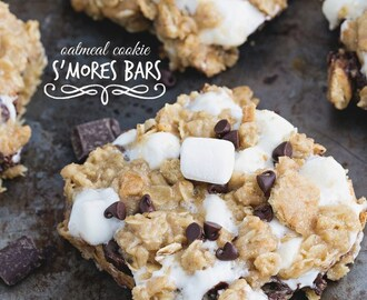 Oatmeal Cookie S'mores Gooey Bars