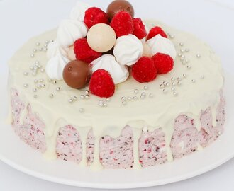 Raspberry, Chocolate & Meringue Ice-Cream Cake