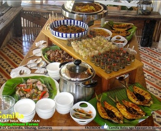Farm-to-Plate Culinary Experience at Springbloom Farm in Guimaras