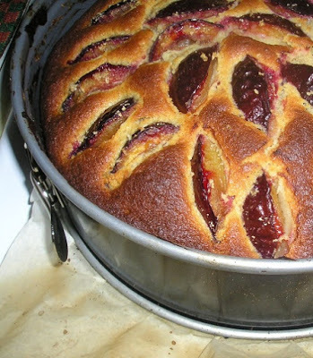 Spiced plum and honey cake (no extra sugar)