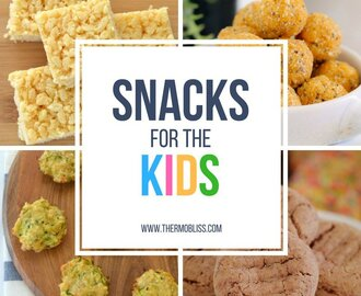 Thermomix Snacks for Kids