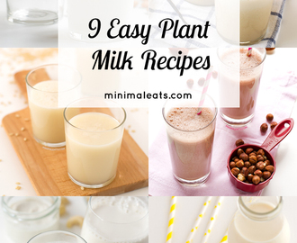 9 Easy Plant Milk Recipes