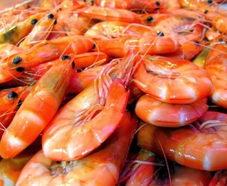 Fish Hopper Seafood and Steaks - How to Pick Out the Best Shrimp #SeafoodRecipesWorldwide