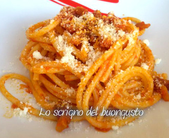 Bucatini con sugo all'amatriciana