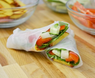 Thai Spring Rolls with a Peanut Ginger Dipping Sauce
